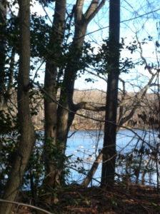 Burke Lake, VA.
